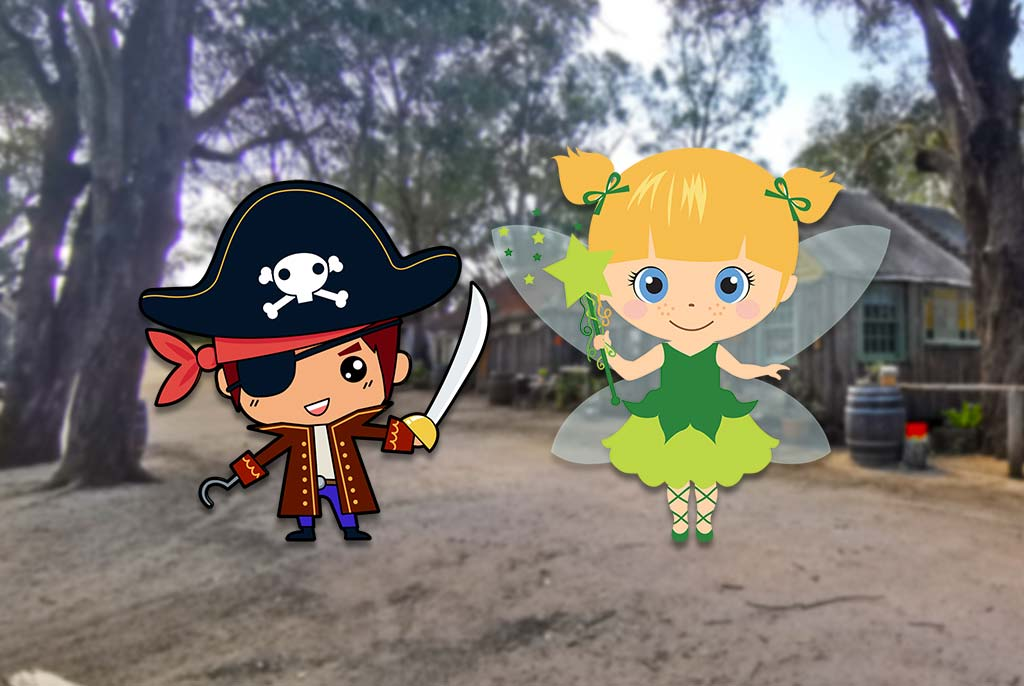 Pirate Fairy Party